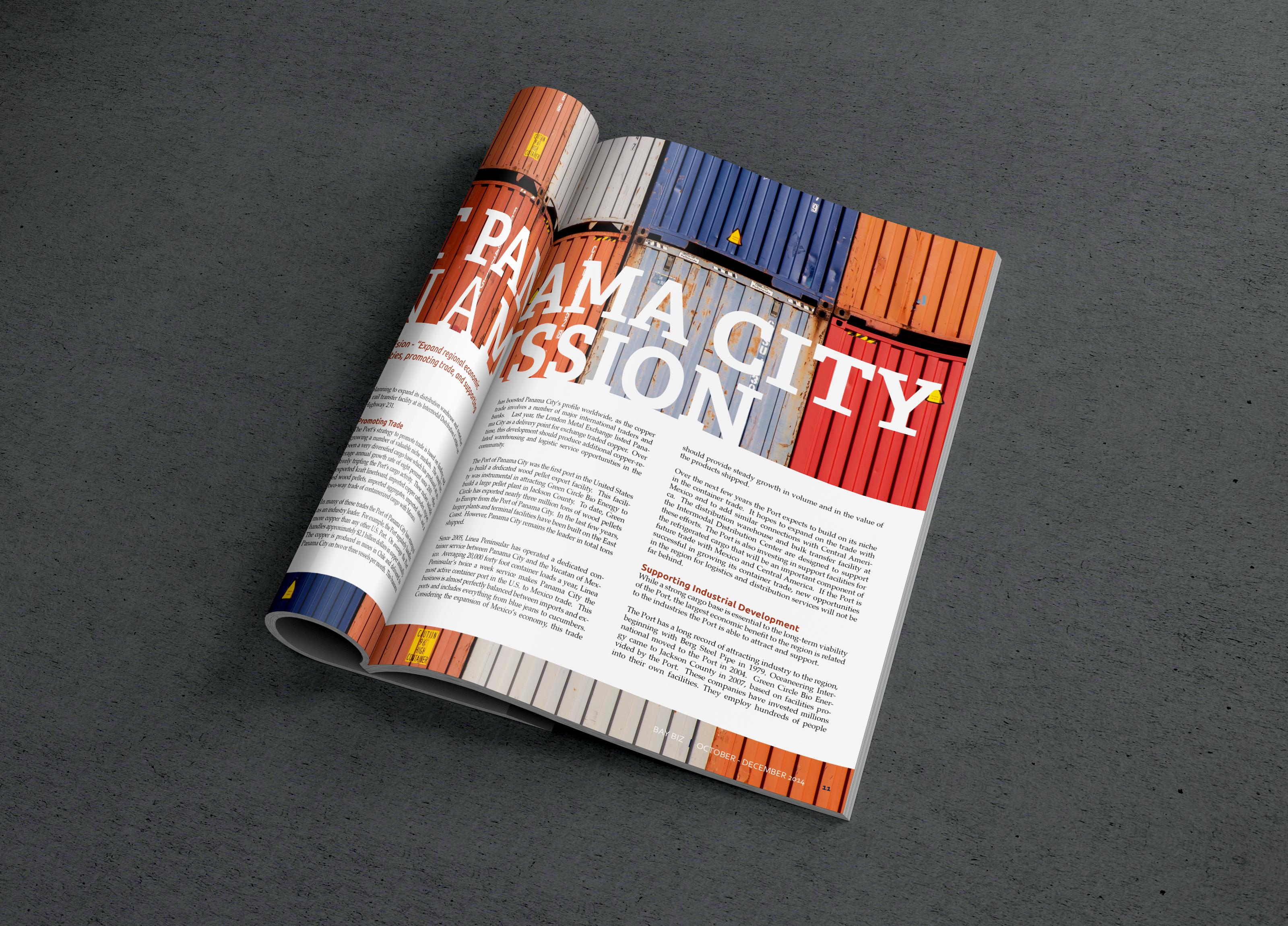 baybiz-magazine2